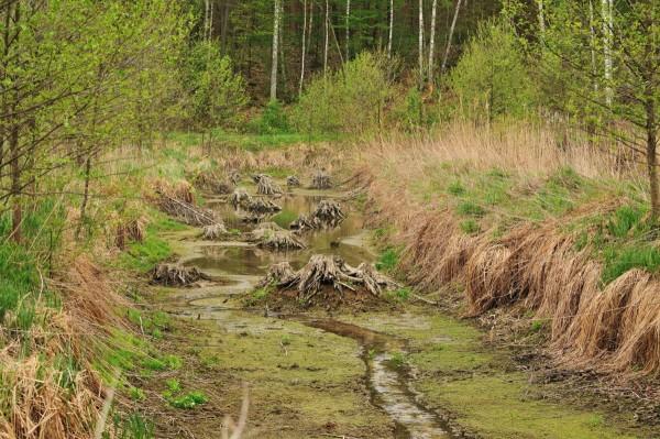 יום עיון בנושא שיקום קרקעות מי תהום מזהמים
