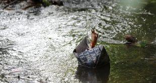 הכנס השנתי של האגודה הישראלית למשאבי מים